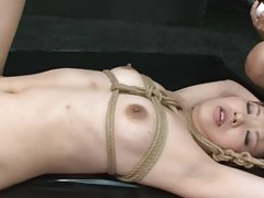 Free Tied Videos