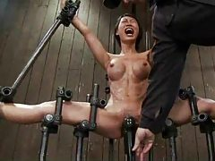 Girls with great bodies in painful bondage tubes