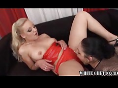 Hot chicks in lingerie eat pussy tubes
