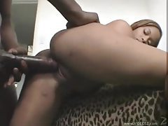 Black on black with big cock action tubes