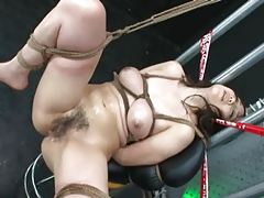 Asian Fuck and Suck Feast tubes