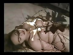 Hot Waxed And Roped Asians tubes