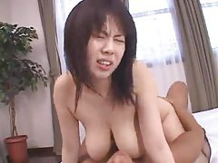 Chubby Japanese girl sits on his dick tubes