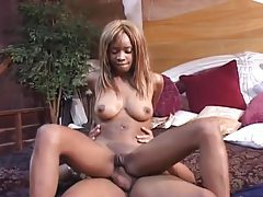 Tonguing a black whore and fucking her ass tubes