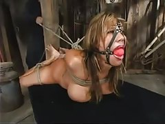 Busty bitch tied up and used by her master tubes