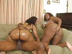 Fucking two hot black bitches in their asses tubes