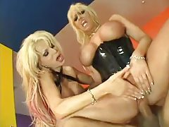 Big titties on these bimbo sluts in a threesome tubes
