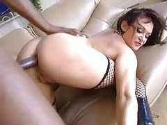 Tasty Tory Lane nailed in the ass by BBC tubes