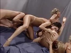 Pornstar cunt lapping in lesbian orgy tubes