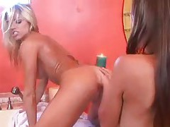 Slim chicks get all frisky in the bathroom tubes