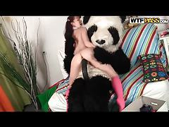 Pigtailed teen enjoys kinky sex with stuffed Panda toy tubes