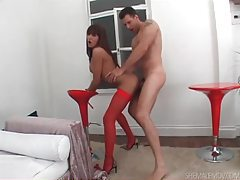 Fucking shemale in stockings from behind tubes
