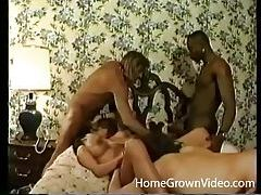Gorgeous ladies get their holes rammed in hardcore orgy tubes