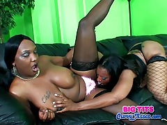 Chubby black lesbians like to eat the pussy tubes