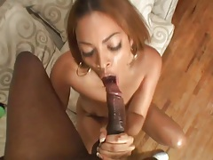 Plunging cock into black pussy from behind tubes
