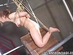 Japanese babe bond and dildoed tubes