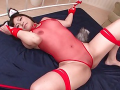 Tied girl in bunny ears and lingerie licked tubes