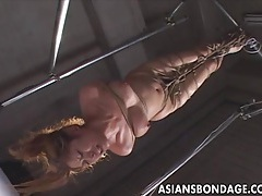 Asian bondage scene with rope suspension and forced orgasm tubes