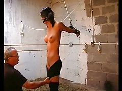 Blindfolded and bound girl with big fake tits tubes