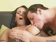 Foxy brunette tranny babe sucking on a hard cock tubes