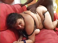 Black cock humps fat latina slut tubes