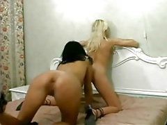 Lusty cunt lappers in arousing lesbian porn tubes