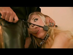 Leather boots and collar on cocksucking blonde tubes