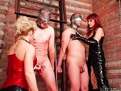 Men bound and abused by beauties in latex tubes
