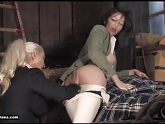 Hot busty lesbians enjoy licking and fucking in stables tubes