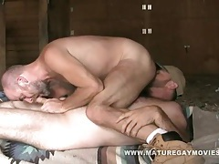 Muscular macho bear barebacks his friend tubes