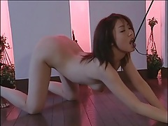 Mistress in latex dominates japanese girl tubes