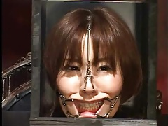 Japanese head in a box in kinky bdsm video tubes