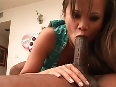 Shaved asian cunt fucked by a black dick tubes
