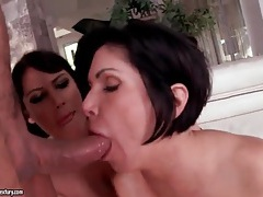 Fake tits milfs share hard dick and cumshot tubes