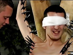 Bound twink with clothes pins all over his skin tubes