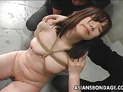 Poor asian babe punished tubes