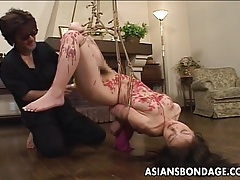 Attractive japanese hottie moans while being punished tubes