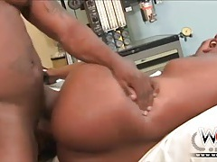Wcp club thick black beauty loves a bbc tubes