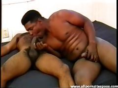 Sucking cock with a hairy black guy tubes