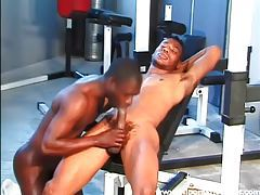 Black anal in the gym is sexy tubes