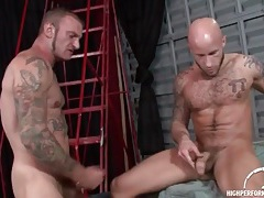 Bald guy on top of bear cock and riding it tubes