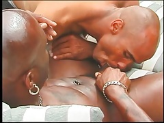 Big black cocks sucked in hot compilation tubes