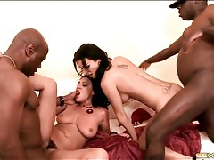 Busty babes and their black lovers fuck wildly tubes