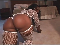 Fat ass black chicks in fishnets shake it tubes