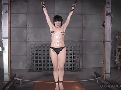 Bondage and nipple clamps for a girl in the dungeon tubes