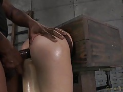 Slave in a box fucked in the ass from behind tubes