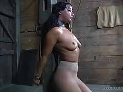 Sexy whipping of a bound girl in sub space tubes