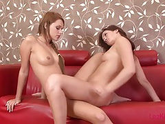 Naked lesbians on the couch suck tits and eat cunt tubes